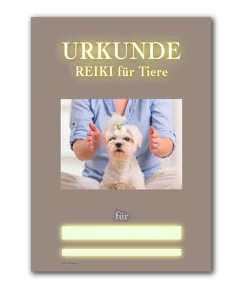Reiki Urkunde 26