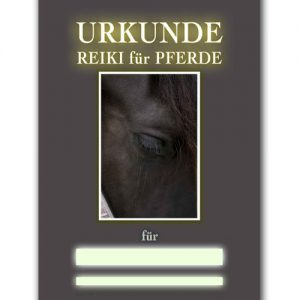 Reiki Urkunde 29