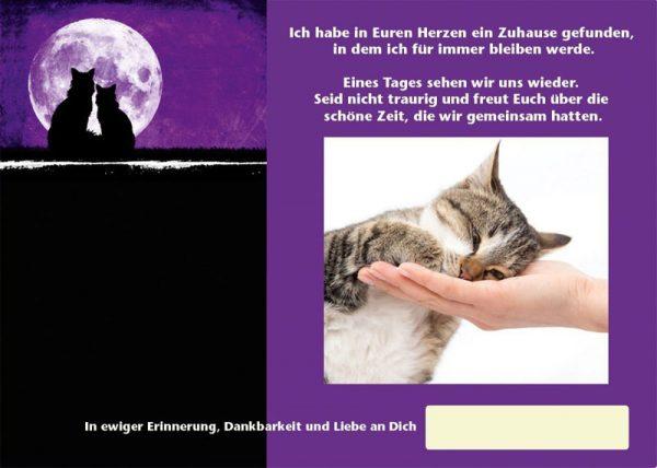 Tiertrauerurkunde-TTU-3-Katze