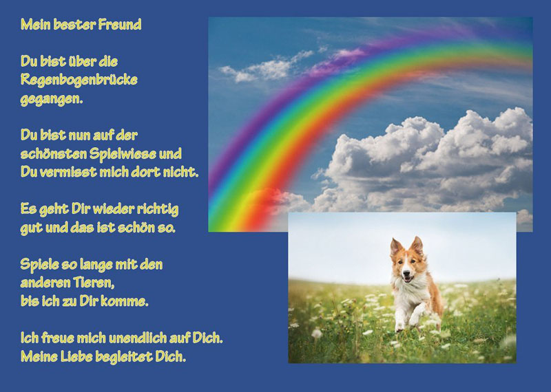 Tiertrauerurkunde-TTU-6-Hund