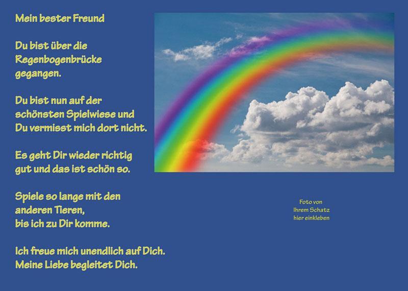 Tiertrauerurkunde-TTU-6-Regenbogen